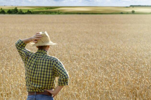 droit-preemption-fermier-vente-terrain-agricole