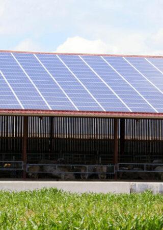 énergies renouvelables agriculture