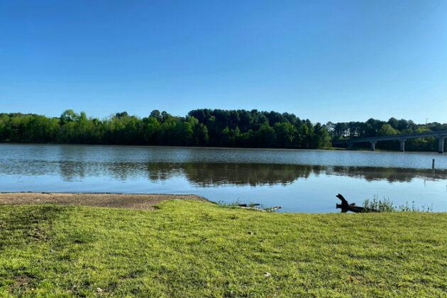 Bandes tampons le long des cours d'eau